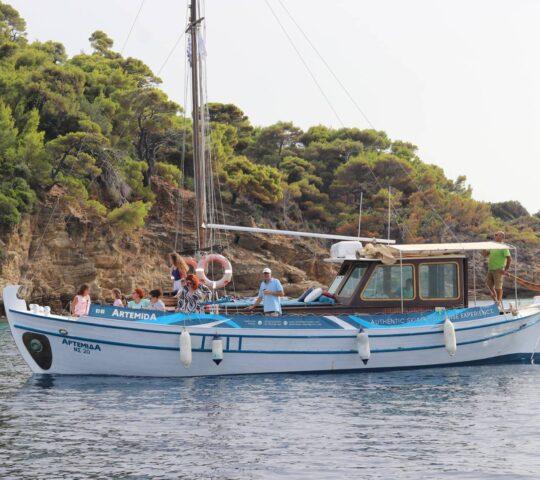 Artemida Cruises