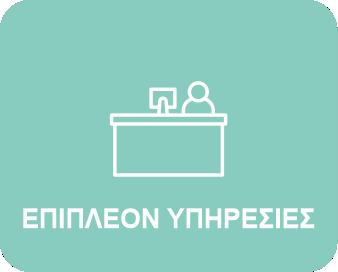 epipleon-ypiresies