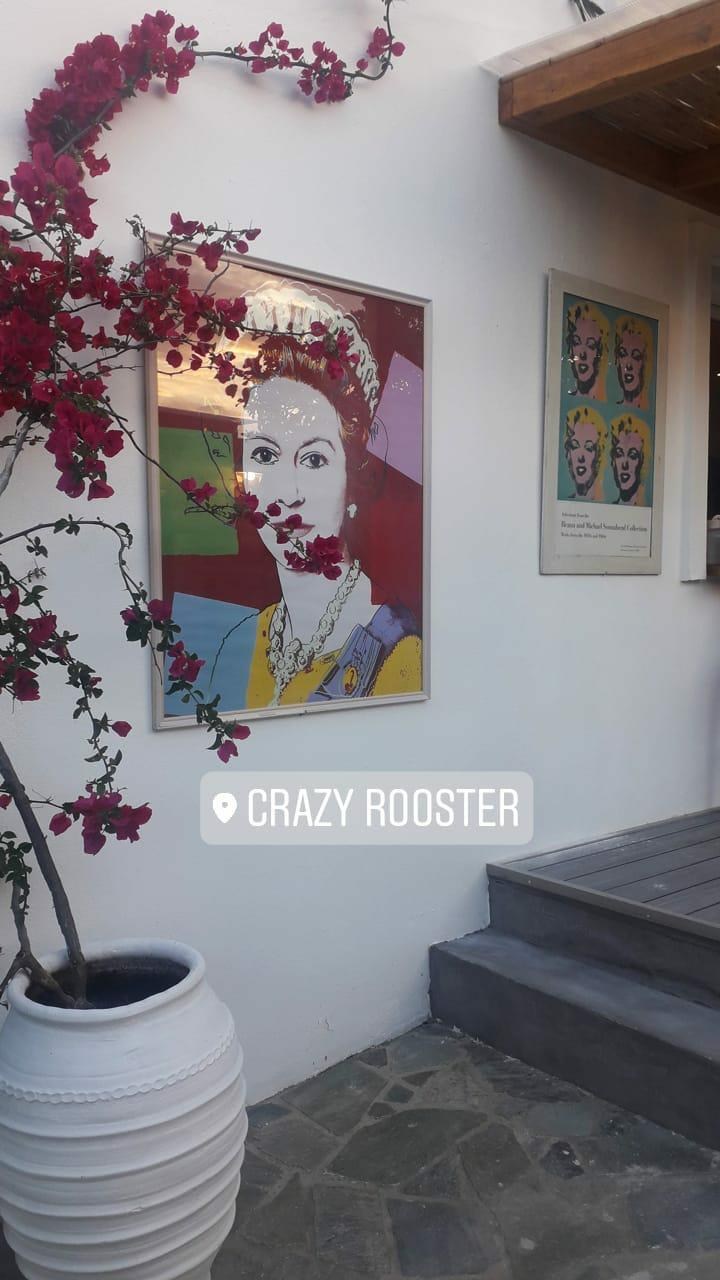 Crazy Rooster
