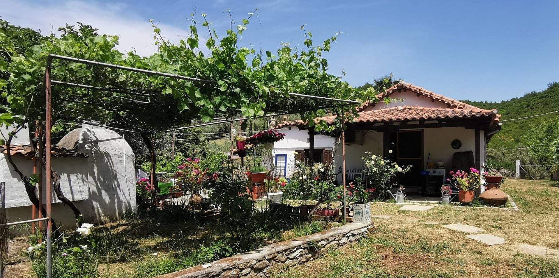 Land 8.726 m² for sale in Troulos with 3 buildings