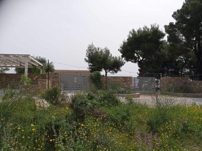 Land 7.200 m² for Sale